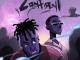 Zuchu – Nyumba Ndogo, ThinkNews