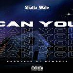 MP3: Shatta Wale – Shw3, ThinkNews
