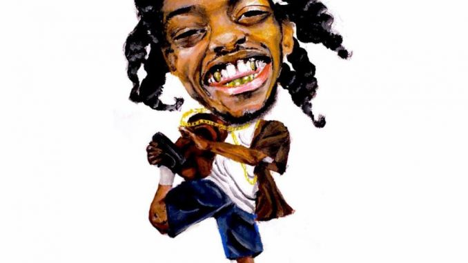Pink Siifu – Lng Hair Dnt Care